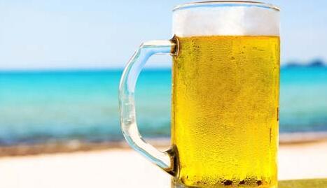华洋啤酒加盟